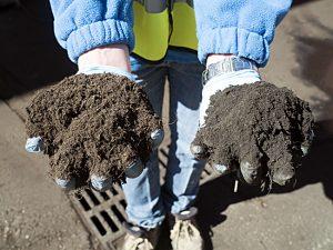 Generar un compost para reducir el problema de la quema de la paja del arroz de l´Albufera