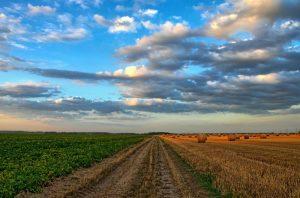 Impulsar el binomio EDAR-Agricultura mediante el desarrollo de fertilizantes con base de estruvita